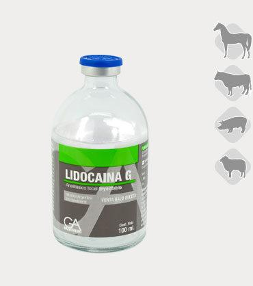 Lidocaina_G_x100ml